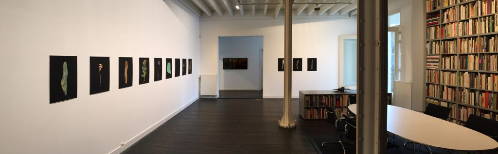 Hindenburgline Project exhibition at Galerie Nouvelles Images The Hague 2017